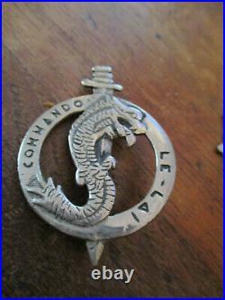 RARE INSIGNE 1° R. E. C, Commando LE LAI, métal chromé, 60 millimètres LEGION